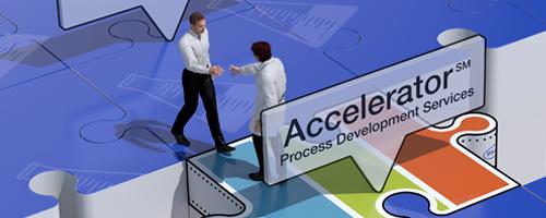 Accelerator Process Development Services,Accelerator Process Development Services